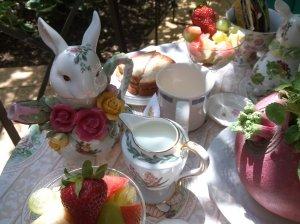 IMG_20130516_145704 rabbit teaparty