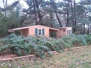 Steve and Josh built this great bunny barn and chicken coop.